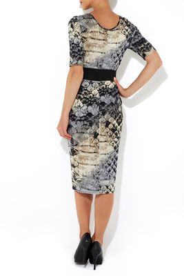 Wallis Neutral Snake Print Midi Dress Back