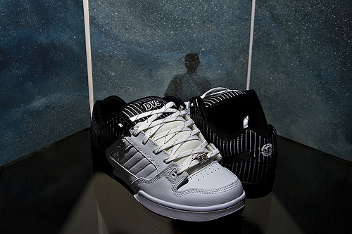 DVS Skate Shoes