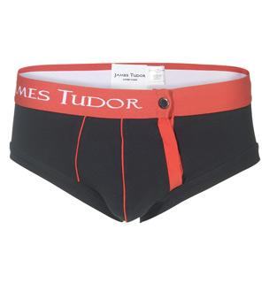 James Tudor Magnetic Brief